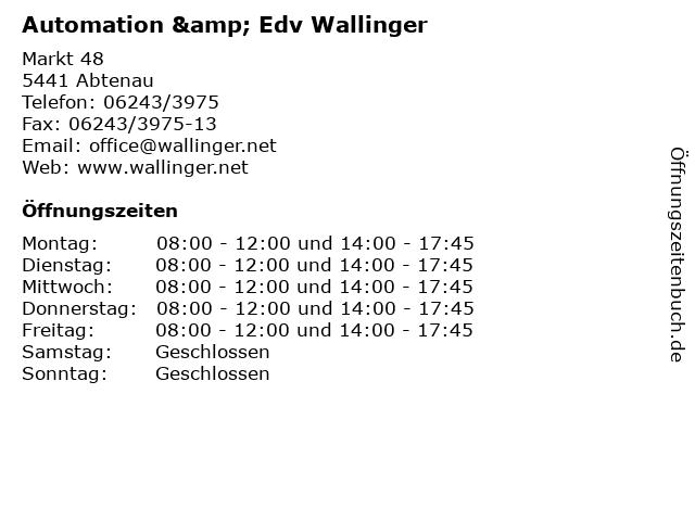 Automation & Edv Wallinger in Abtenau: Adresse und Öffnungszeiten