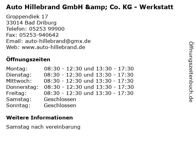 Auto Hillebrand GmbH & Co. KG - Werkstatt in Bad Driburg: Adresse und Öffnungszeiten