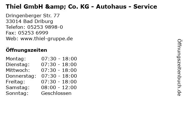 Thiel GmbH & Co. KG - Autohaus - Service in Bad Driburg: Adresse und Öffnungszeiten