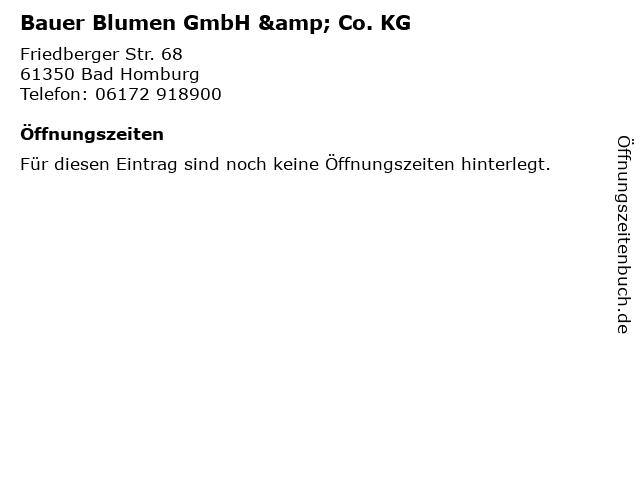 ᐅ Offnungszeiten Bauer Blumen Gmbh Co Kg Friedberger