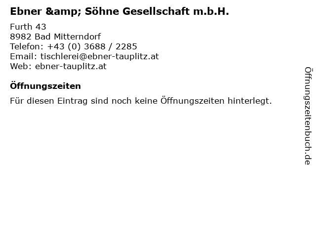 Ebner & Söhne Gesellschaft m.b.H. in Bad Mitterndorf: Adresse und Öffnungszeiten