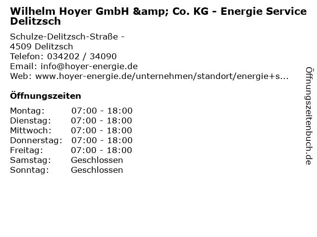 Wilhelm Hoyer GmbH & Co. KG - Energie Service Delitzsch in Delitzsch: Adresse und Öffnungszeiten