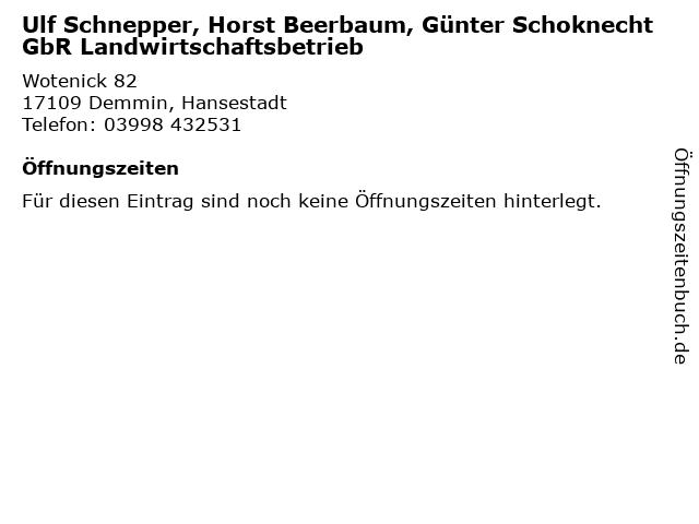 Ulf Schnepper, Horst Beerbaum, Günter Schoknecht GbR Landwirtschaftsbetrieb in Demmin, Hansestadt: Adresse und Öffnungszeiten