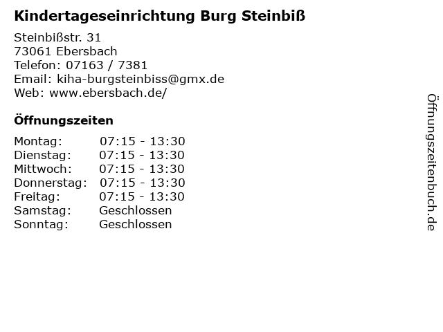 Kindertageseinrichtung Burg Steinbiß in Ebersbach: Adresse und Öffnungszeiten