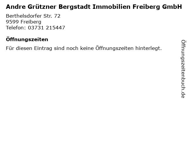 Andre Grützner Bergstadt Immobilien Freiberg GmbH in Freiberg: Adresse und Öffnungszeiten