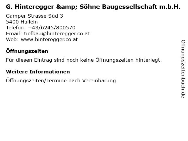 G. Hinteregger & Söhne Baugessellschaft m.b.H. in Hallein: Adresse und Öffnungszeiten