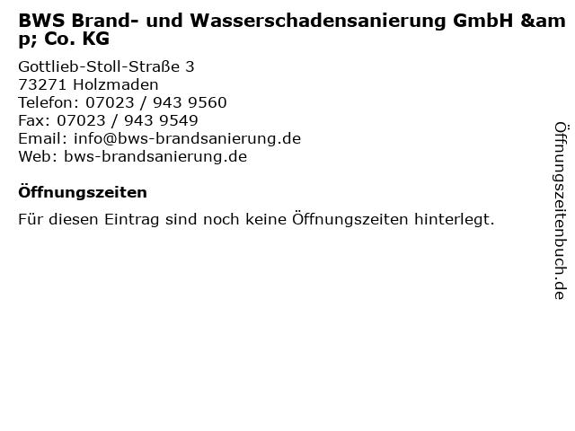 BWS Brand- und Wasserschadensanierung GmbH & Co. KG in Holzmaden: Adresse und Öffnungszeiten