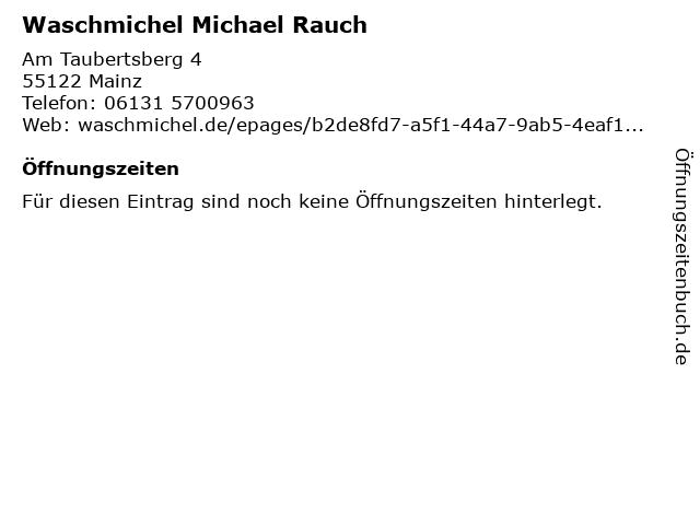 Waschmichel Michael Rauch in Mainz: Adresse und Öffnungszeiten