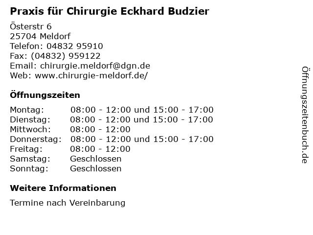 Praxis für Chirurgie Eckhard Budzier in Meldorf: Adresse und Öffnungszeiten