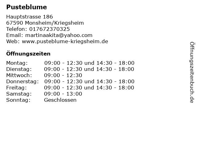 Pusteblume in Monsheim/Kriegsheim: Adresse und Öffnungszeiten