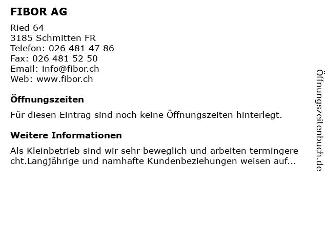 FIBOR AG in Schmitten: Adresse und Öffnungszeiten