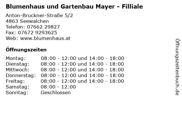 Blumenhaus und Gartenbau Mayer - Filliale in Seewalchen: Adresse und Öffnungszeiten