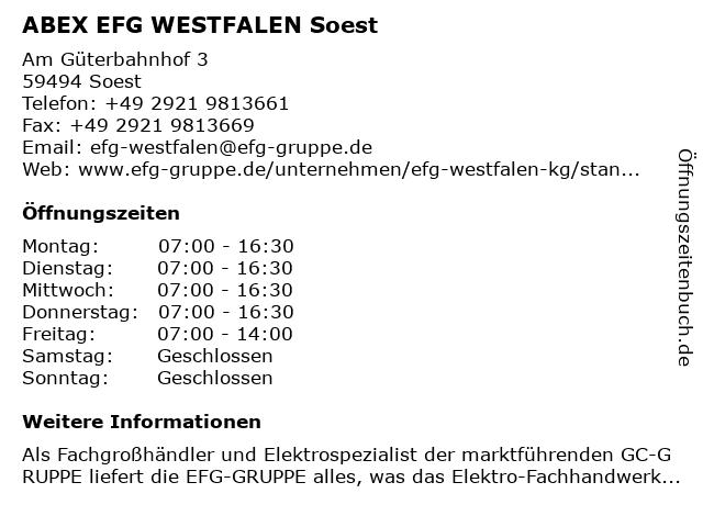 ABEX EFG WESTFALEN in Soest: Adresse und Öffnungszeiten