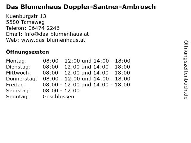 Blumenhaus Doppler-Santner-Ambrosch GmbH in Tamsweg: Adresse und Öffnungszeiten