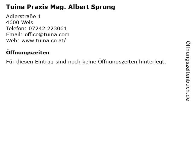 Tuina Praxis Mag. Albert Sprung in Wels: Adresse und Öffnungszeiten
