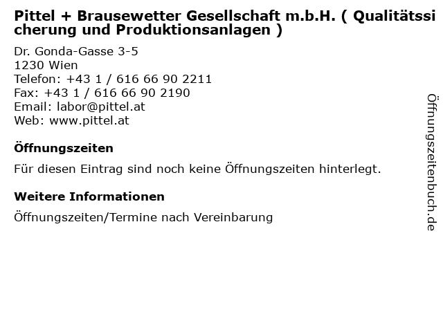 Pittel + Brausewetter Gesellschaft m.b.H. ( Qualitätssicherung und Produktionsanlagen ) in Wien: Adresse und Öffnungszeiten