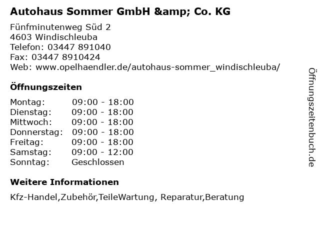Autohaus Sommer GmbH & Co. KG in Windischleuba: Adresse und Öffnungszeiten